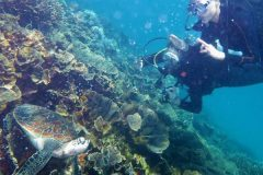 indonesia-raih-the-best-dive-destination-2017