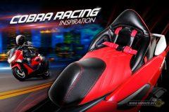 cobra-racing-inspiration
