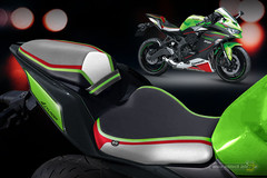 personalize-zx25r-2021