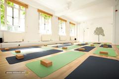 individual-matras-yoga